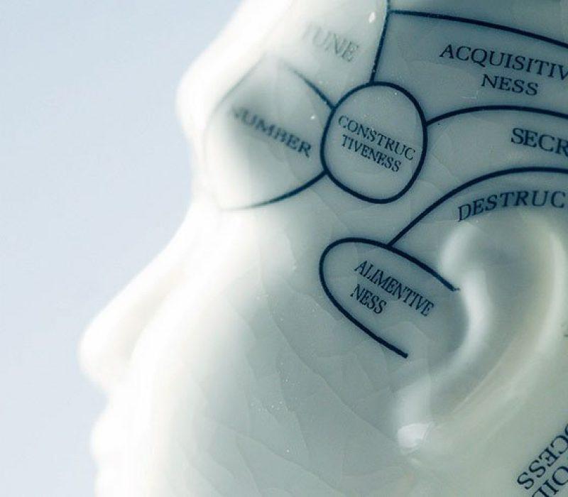 metrowest-neuropsychology-philosophy